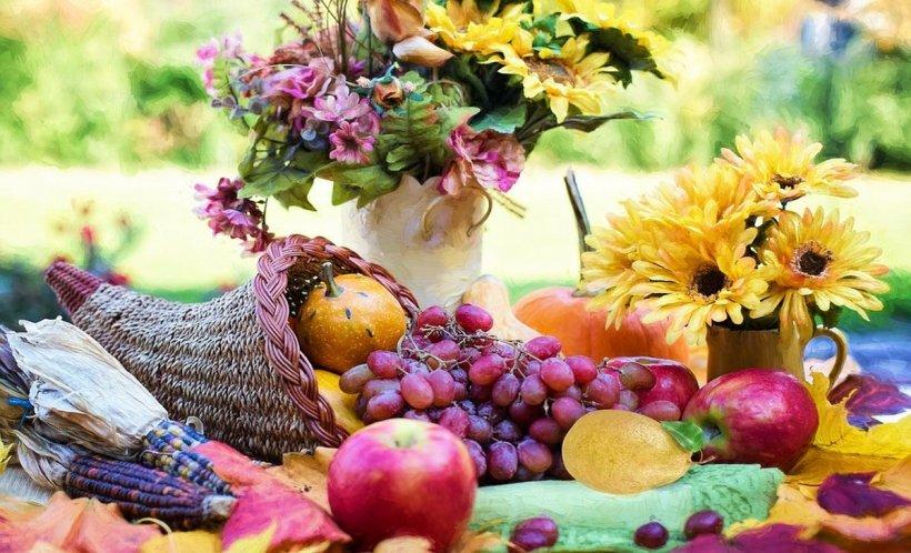 DIETA. Cum să revii la silueta dorită, după o vară în care ți-ai satisfăcut toate poftele culinare