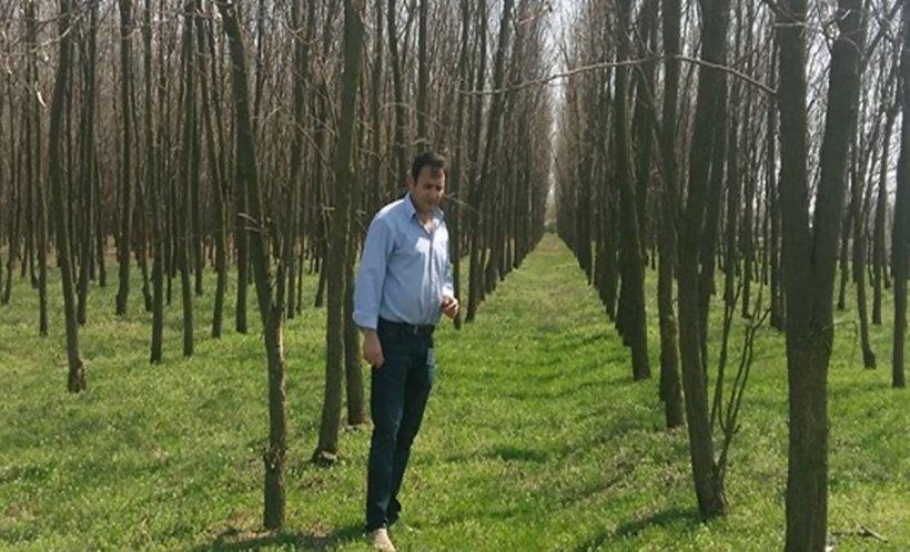 Un fermier din Teleorman a plantat pe pământul său 40.000 de copaci. Garda de Mediu a mers acolo şi l-a amendat