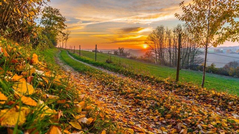 VREMEA. Prognoză meteo pentru weekend 9-10 noiembrie. Temperaturi de vară și soare în toată țara