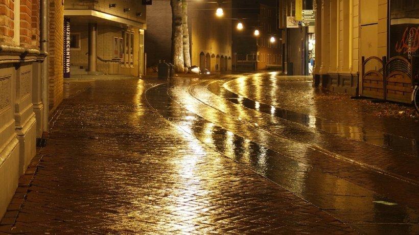 Ieșise să se plimbe cu puțin timp înainte de miezul nopții, când un bucureștean a avut parte de o întâlnire cu totul neașteptată pe stradă. Era chiar în fața lui! (VIDEO)