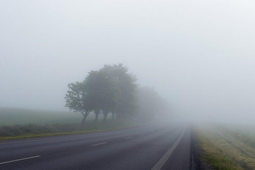 Cod galben de ceață în mai multe județe din țară, miercuri dimineața