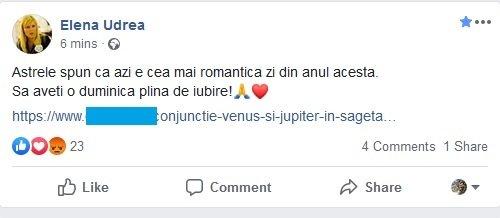 Elena Udrea, mesaj bizar pe Facebook, în ziua votului