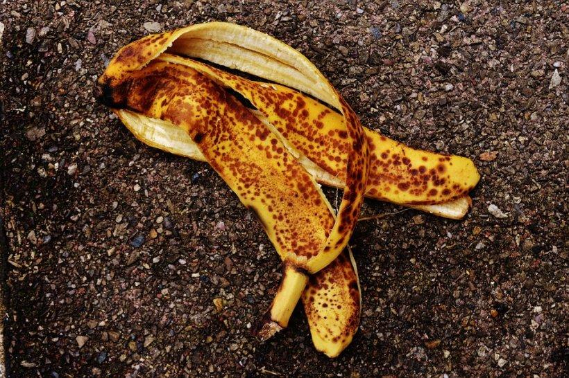 A zărit o banană lipită cu scotch pe perete. Când a văzut ce se întâmpla de fapt, a crezut că leșină: Nu se poate așa ceva, nu există!