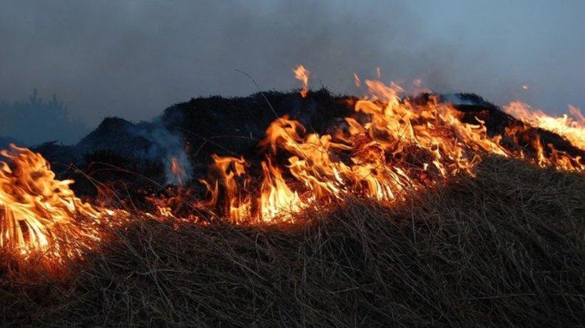 Un bărbat din Suceava a fost găsit carbonizat în zona unui incendiu de vegetaţie uscată