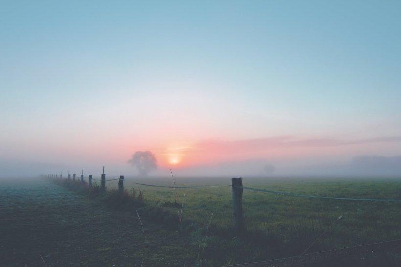 ANM: Capitala şi alte 18 judeţe, sub Cod galben de ceaţă densă