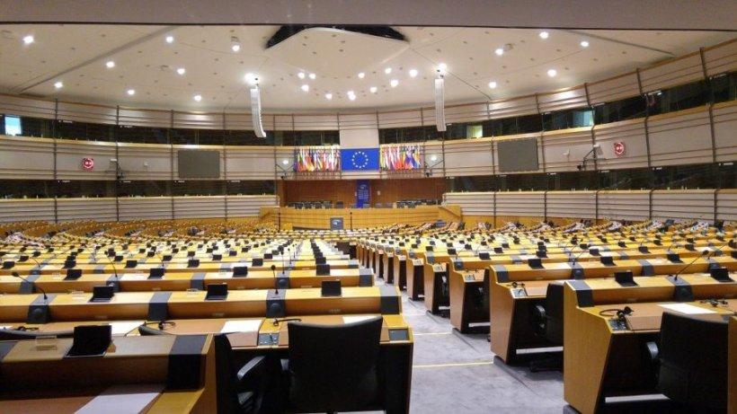 Be EU. Transportul animalelor, dezbătut în Parlamentul European