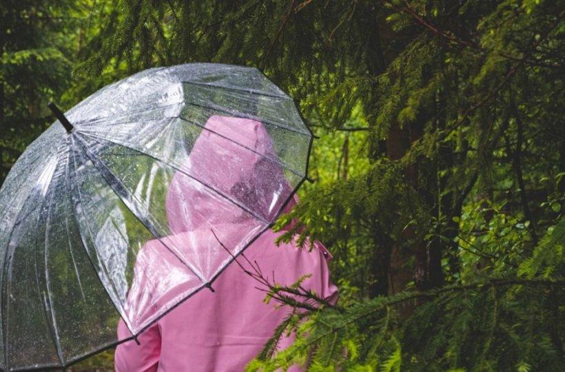 Vremea. Meteorologii anunță când vin ploile