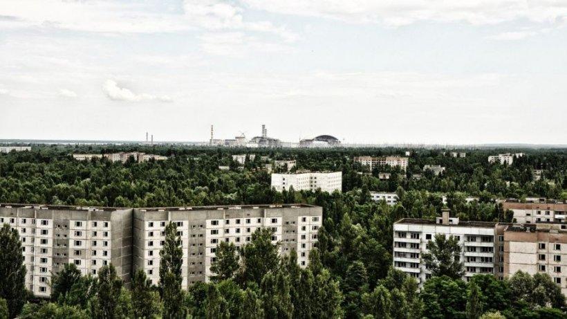 S-a decorat primul brad de Crăciun în Cernobîl, după 33 de ani. Cine a luat inițiativa FOTO
