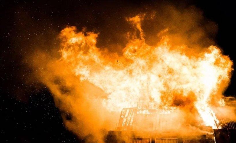 O grădină zoologică a luat foc de la artificiile de Revelion. Zeci de animale au murit