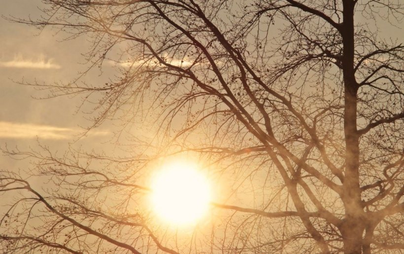 Vreme anormal de caldă în plină iarnă. Locul în care temperatura ajunge la 18 grade
