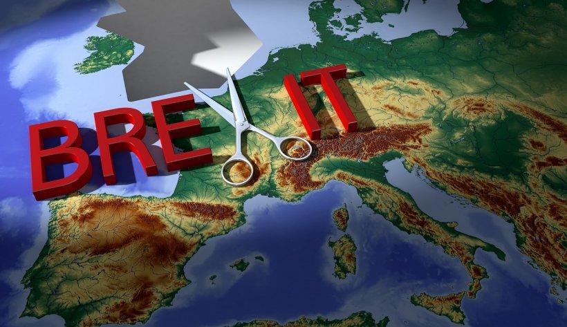 Ziua Brexit-ului. Cum văd românii din Marea Britanie ruperea de Uniunea Europeană