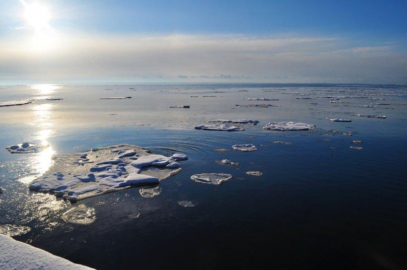 Record absolut de temperatură în Antarctica: +20,75 grade Celsius!