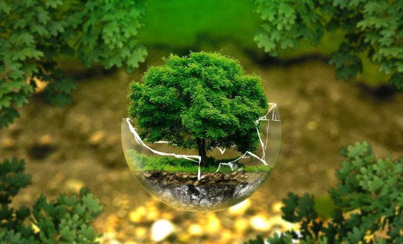 Be EU. Uniunea Europeană, program drastic de ecologizare