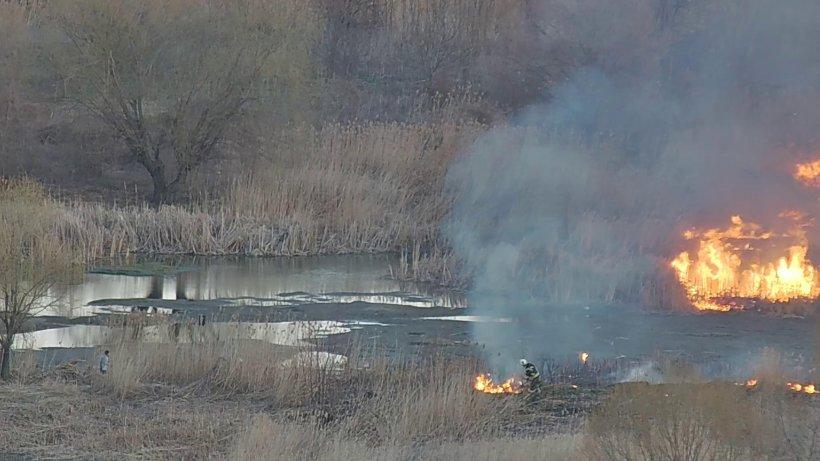 Al doilea incendiu în Delta Văcărești, la nici 24 de ore după ce flăcările au devastat 20.000 de metri pătraţi de vegetație