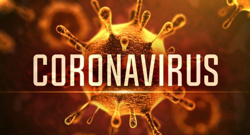 Cel mai des întâlnite 8 întrebări despre coronavirus, în România 482