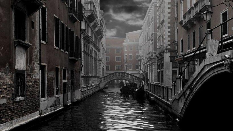 """Celebrele canale din Veneția, """"curățate"""" de pandemia de coronavirus. Apa a devenit brusc cristalină"""