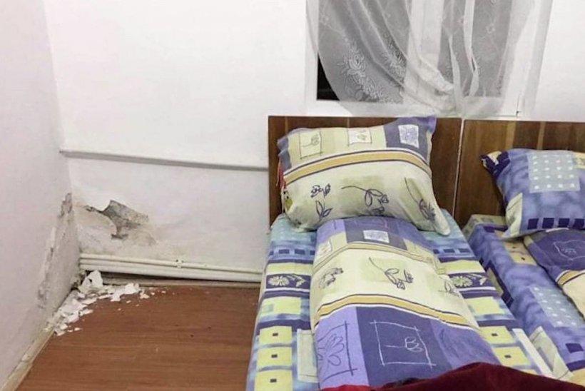 Condiții mizere, în centrul de carantină din Buzău. Gândaci și miriapode mișună prin camere
