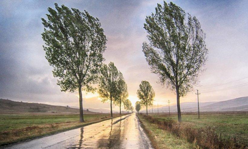 Prognoza meteo specială pentru Capitală: Temperaturi maxime de 3-4 grade și vânt