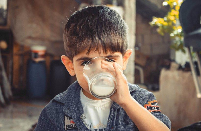Cum congelezi corect laptele, pentru a evita drumurile dese la supermarket pe timpul stării de urgență