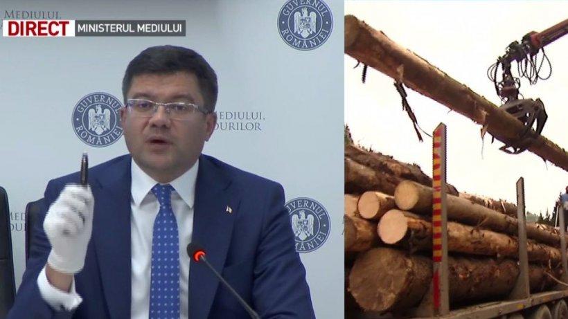 Ministrul Mediului, despre fake news-urile pe tema exploatărilor forestiere: ''Este o campanie agresivă şi fără precedent în România!''
