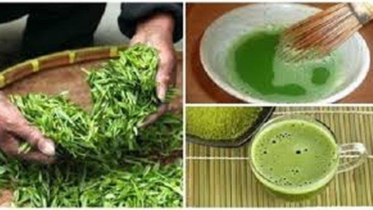 Ceaiul verde te scapa de burta