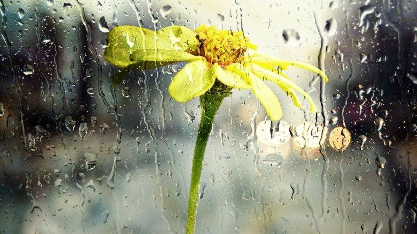 Săptămâna debutează cu ploi şi descărcări electrice. Cât de rece va fi azi