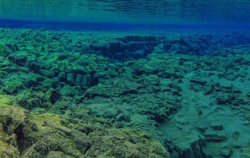 O uriașă placă tectonică de pe glob se va rupe în două. Distanţarea se face cu o viteză semnificativă