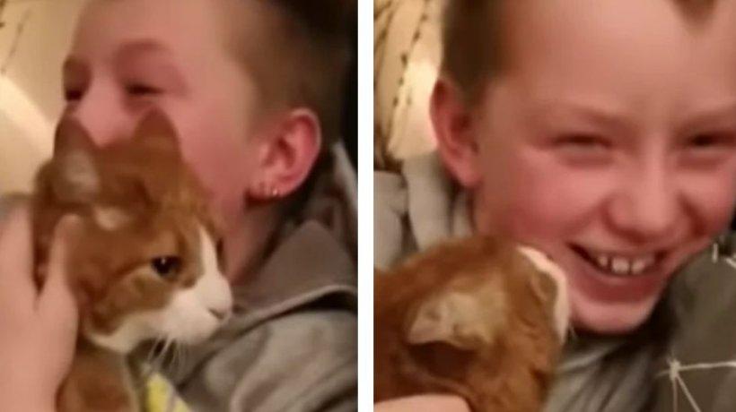 Băiețelul își pierduse pisica în urmă cu șapte luni și suferea cumplit. Într-o zi, a regăsit-o, iar reîntâlnirea a fost emoționantă (VIDEO)