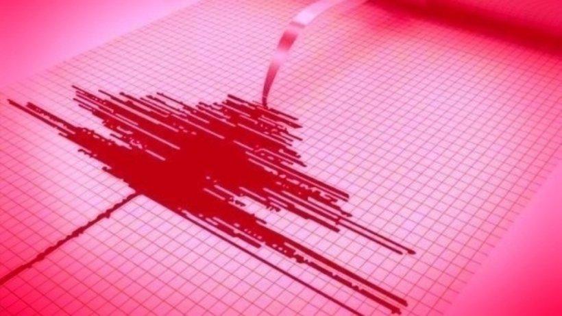 Cutremur, luni după-amiaza, în județul Vrancea