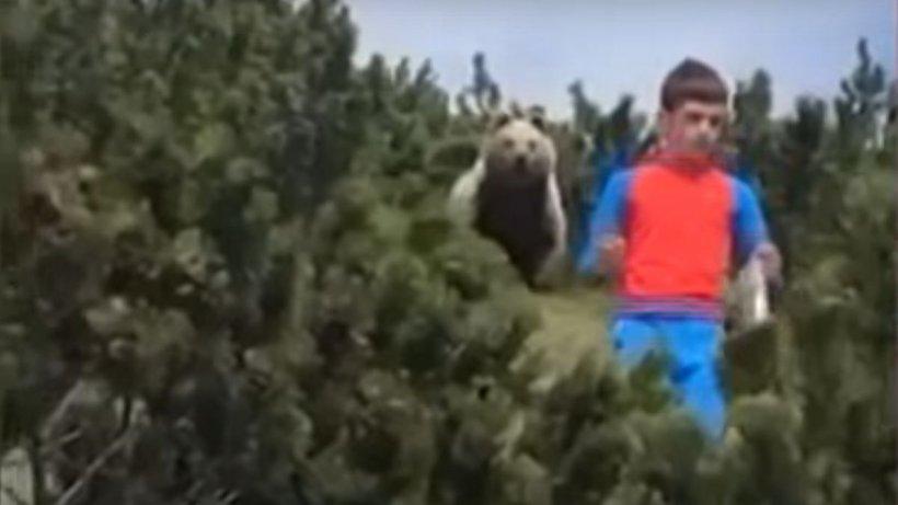 Copil de 12 ani, față în față cu ursul. Cum a reușit să scape de el?