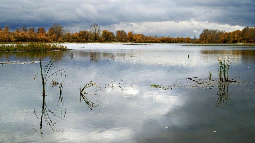 Dezastru natural într-un lac din Siberia. Tone de petrol s-au scurs în apa îngheţată
