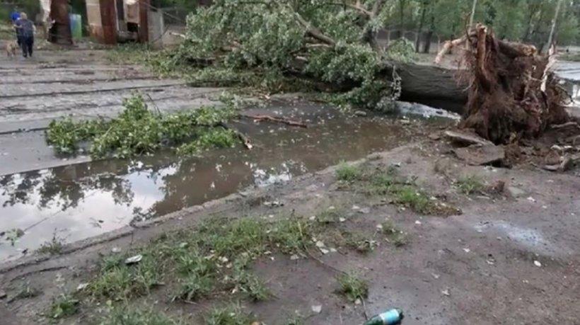 O ploaie torențială a făcut prăpăd în Galaţi. Zeci de copaci căzuți şi numeroase străzi inundate