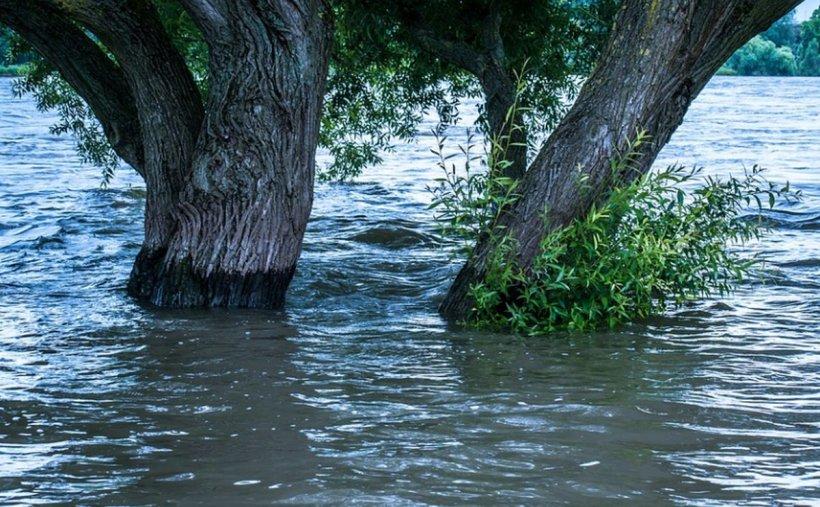 Vremea face ravagii în România. Vin inundațiile! E alertă în 23 de județe