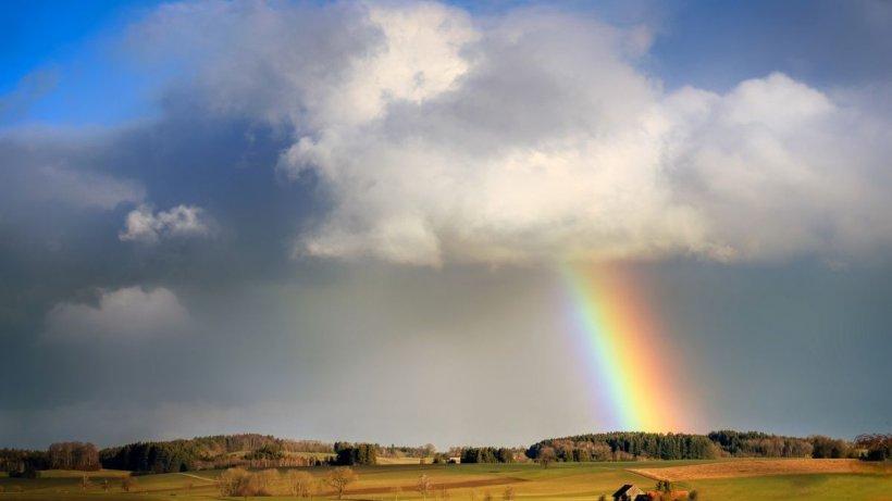 Anunț de ultimă oră al meteorologilor! Informare METEO de caniculă și cod galben de ploi