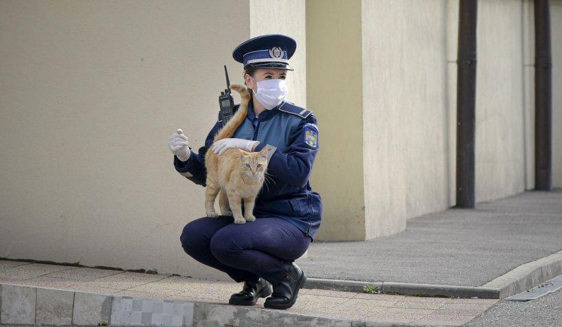 O polițistă din Ploiești s-a făcut de râs și și-a ratat cariera: 'A fost o curiozitate de-a mea'