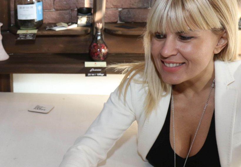 Elena Udrea, mesaj bizar după arestarea prietenei sale Alina Bica