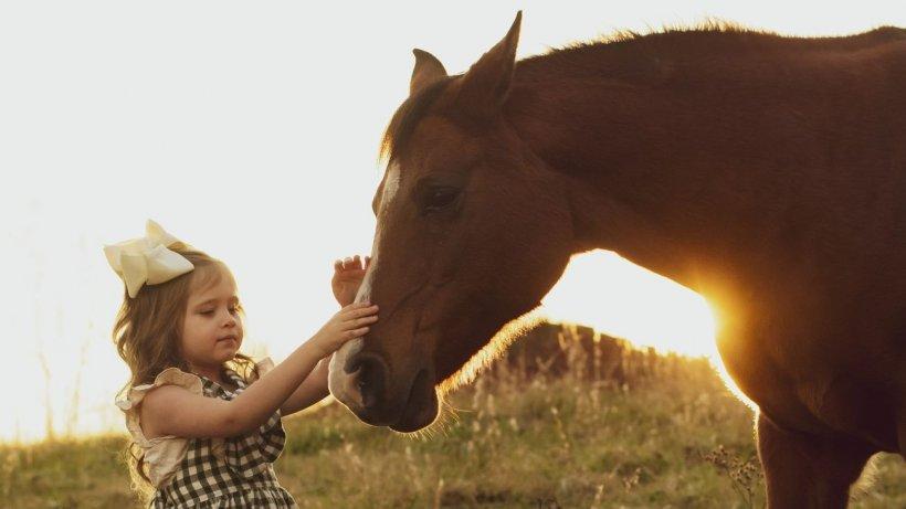 Beneficiile echitaţiei pentru copii şi adulţi