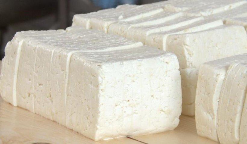 Alertă maximă! Brânza românească toxică, găsită de inspectori în magazine! Ce simptome prezintă cei care au consumat-o