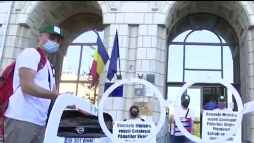 Protest inedit în faţa Ministerului Mediului! Autorităţile, puse la zid pentru că taie pe bandă rulantă ''aurul verde'' al ţării