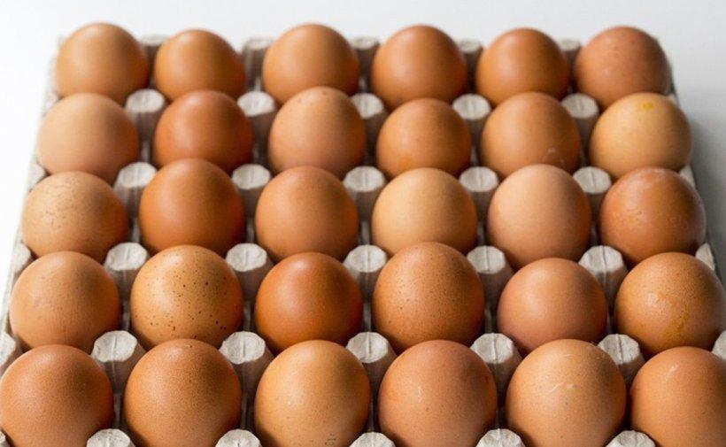 Atenție! Trebuie să vă feriți de ouăle de găină care au ștanțate pe coajă cifra 3! Bucureștenii le consumă des