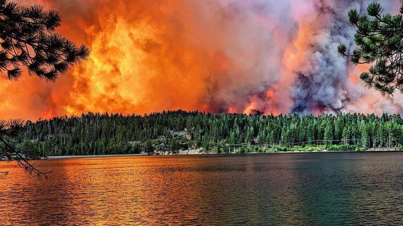 Imagini dramatice din Statele Unite. 200 de oameni salvați din infern