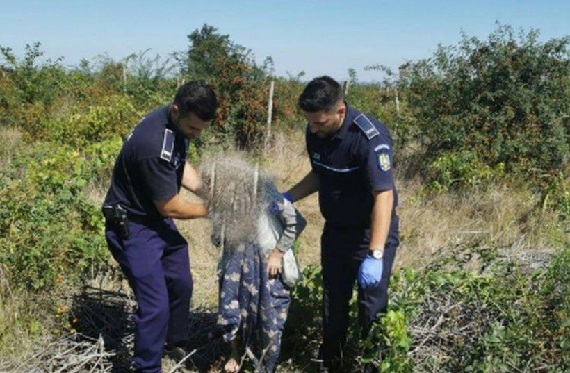 O bătrâna din Vrancea, dată dispărută, a fost găsită de polițiști într-o vie, la 6 km de casă