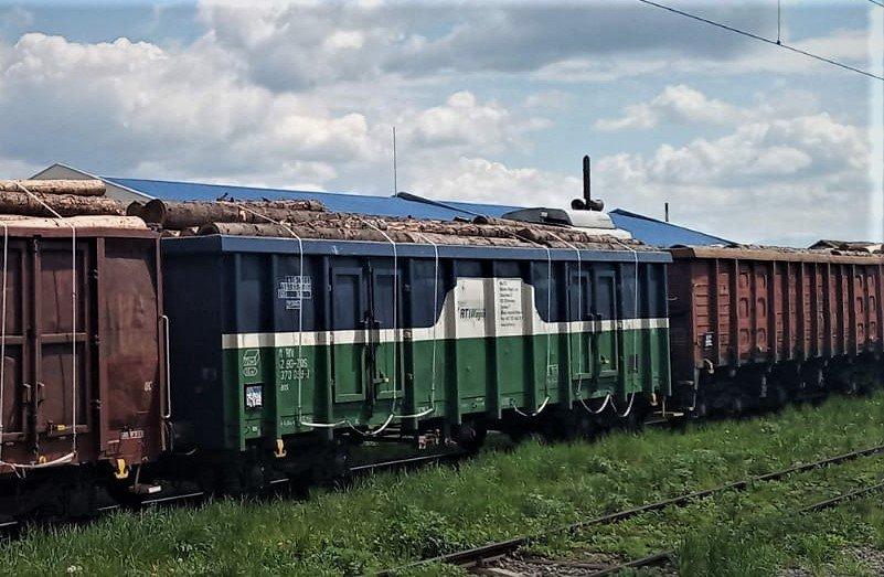 Un tren fără acte, cu 39 de vagoane ticsite cu buşteni, oprit de poliţişti şi de inspectorii gărzii forestiere