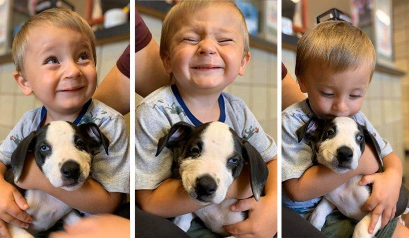 """Un câine cu """"buză de iepure"""" a fost adoptat de un copil care are aceeaşi malformaţie.""""A fost dragoste la prima vedere"""""""