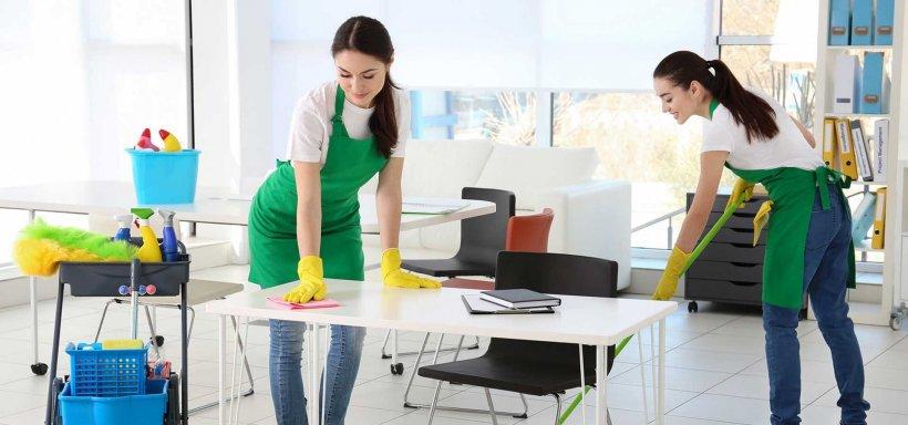 Dust Busters – Servicii de Curatenie Premium pentru Casa Ta