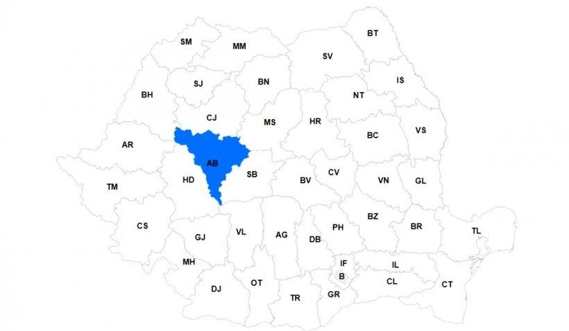 Antena3.ro vă prezintă harta interactivă a alegerilor locale din 2020