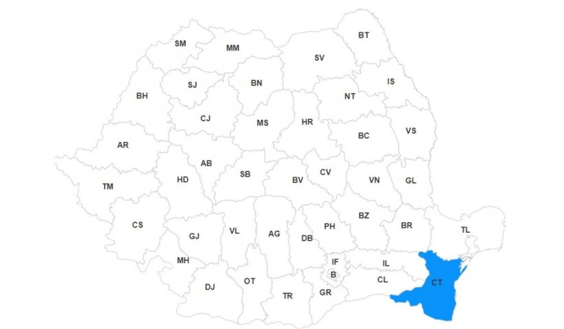 Lista primarilor din județul Constanța, primele rezultate alegeri locale 2020