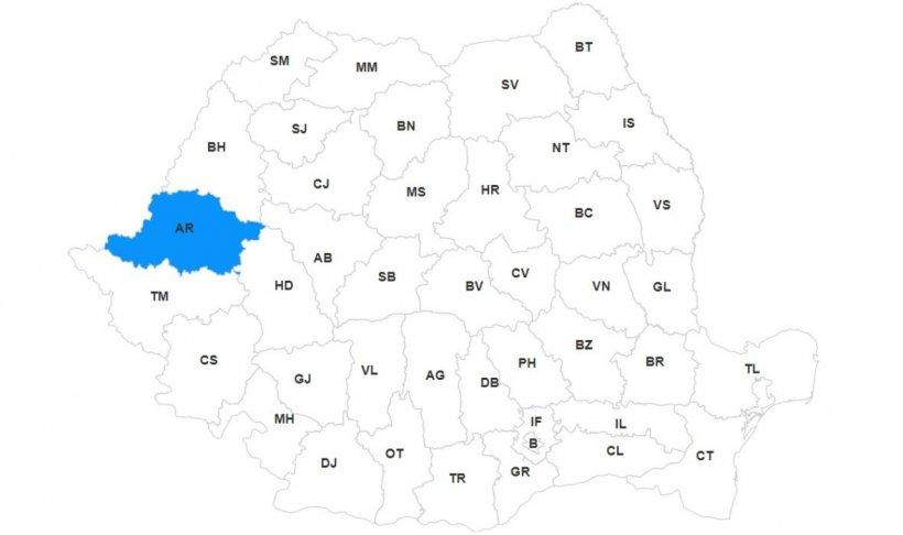 Lista primarilor din județul Arad, primele rezultate la alegerile locale 2020