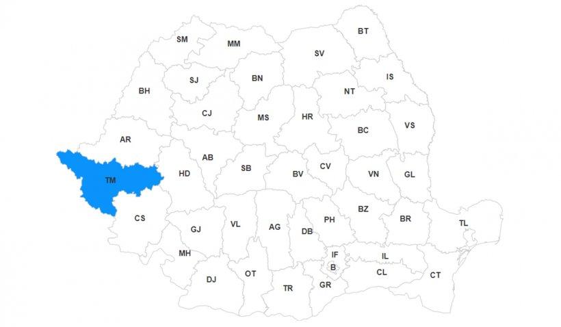 Lista primarilor din judeţul Timiş, primele rezultate la alegerile locale 2020
