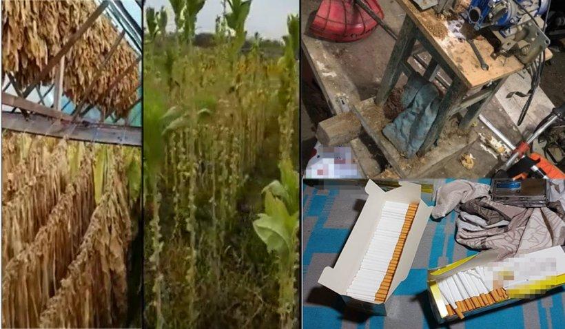 Ţigări confecţionate în condiţii mizerabile, descoperite de poliţişti într-un garaj din Argeş